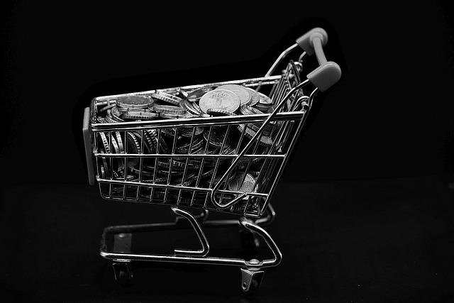 Wanna Go Shopping?